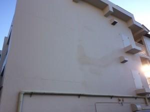 補修の痕が少しでも目立たぬよう、リシンを吹き戻したりと 見た目にも気を配り完成しました。