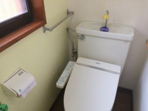 カラー塗装によりトイレが明るくなりました。